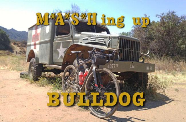 BullDog11MashAA