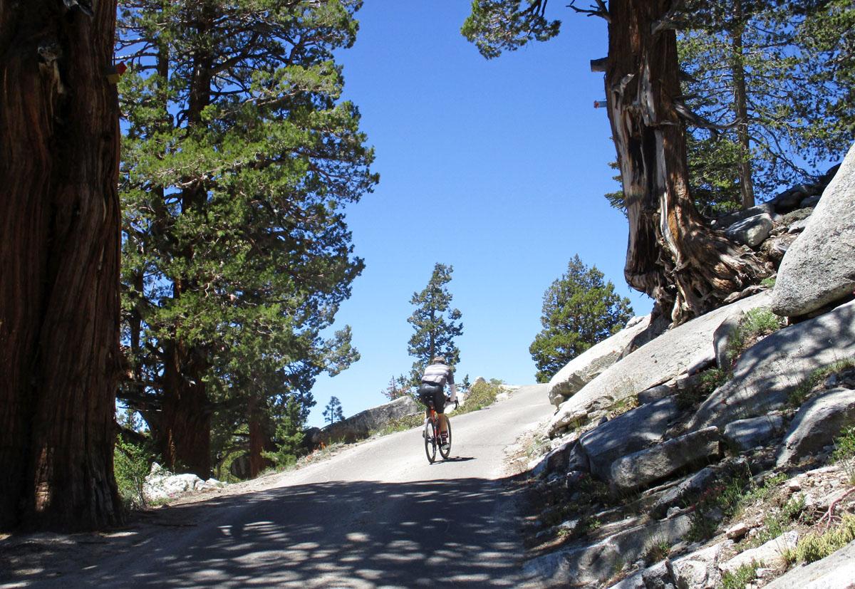 Kaiser Pass Road