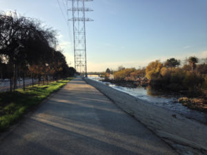 LA River Trail between Mariposa and Victory Bridge 1-24-16
